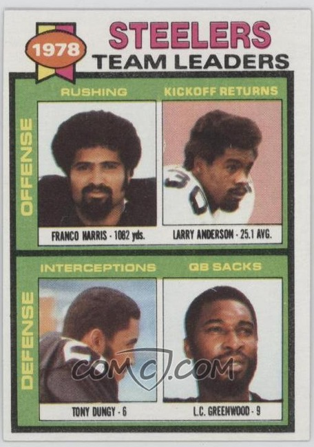 1978 Pittsburgh Steelers team Leaders