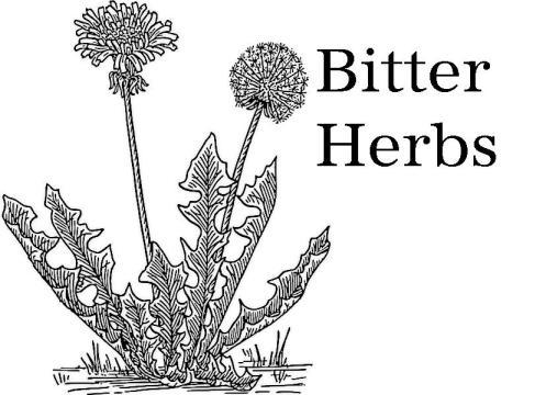 bitter-herbs